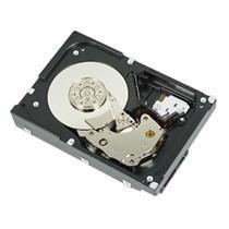 DELL 1TB 72K RPM NLSAS 6GBPS 35IN CABLED HARD DRIVE CUSKIT
