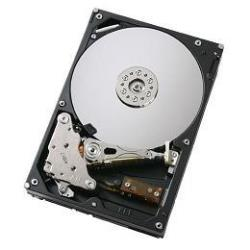 DELL CUS HD 1TRB NL6 7.2K 3.5IN SGT