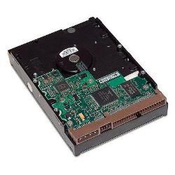 HP - disco duro - 1 TB - SATA 6Gb/s